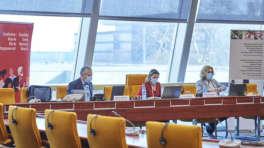 Council of Europe Drafting Committee on migrant women continues its work to develop draft Recommendation on migrant women