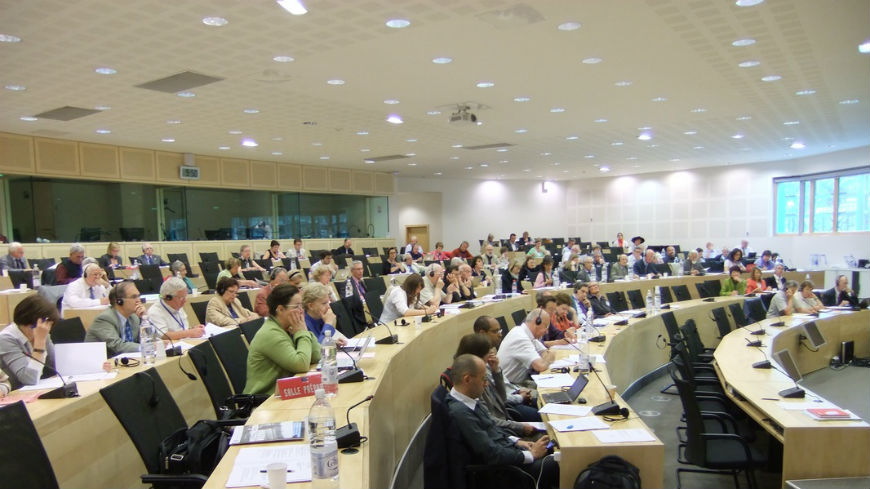 The Conference of INGOs adoped a declaration on the European Social Charter