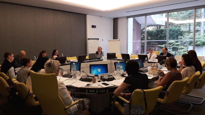 Meeting of the Mutual Information System on Social Protection of the Council of Europe (MISSCEO) network