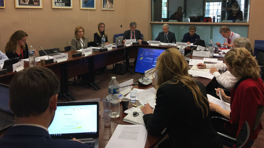 Exchange of views between the Government Agents before the European Committee of Social Rights and the Committee's bureau
