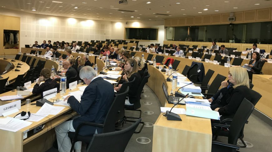 Second meeting of the European Social Cohesion Platform