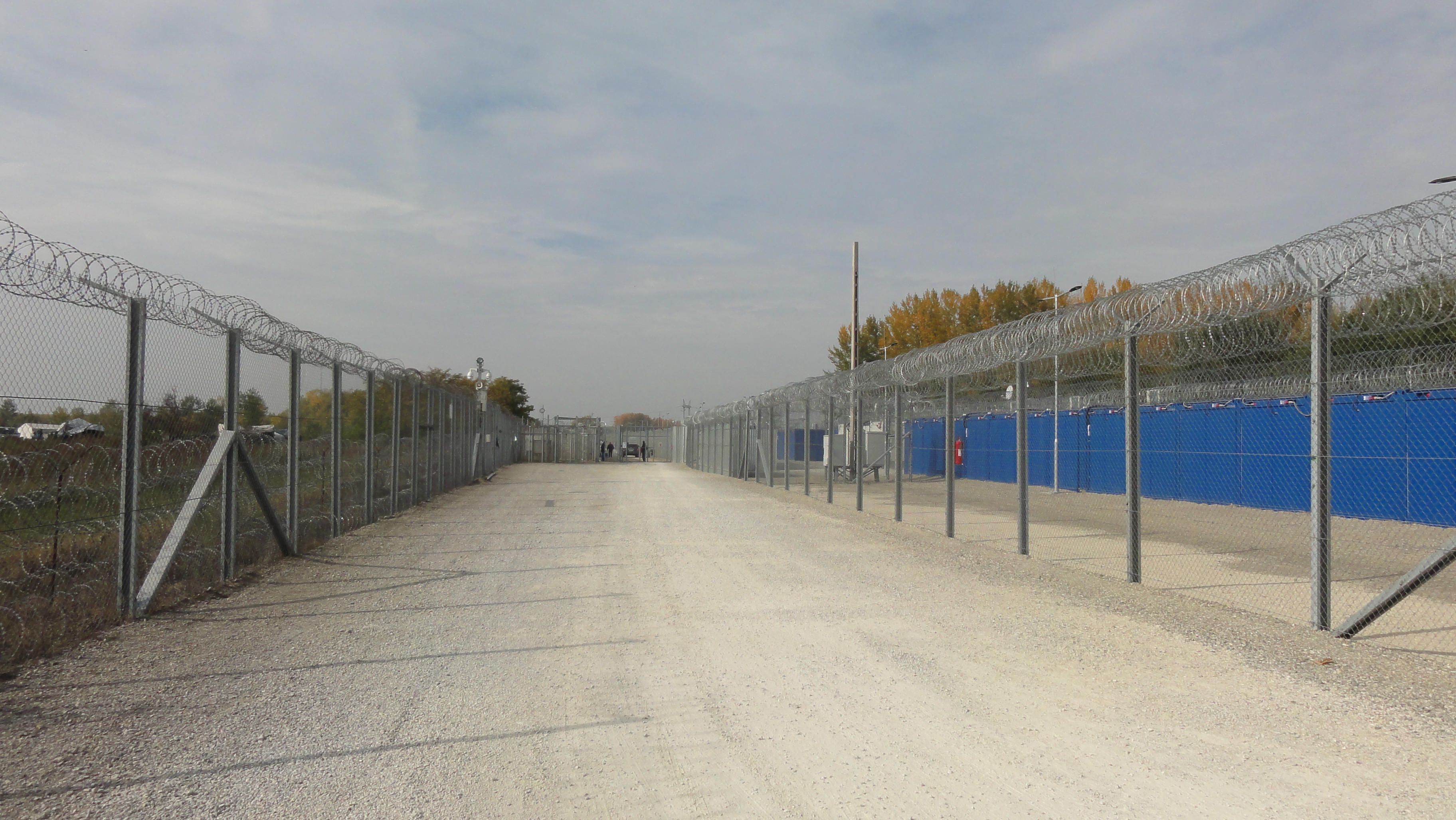 Hungary: anti-torture Committee observed decent conditions in transit zones but criticises treatment of irregular migrants when 'pushed back' to Serbia