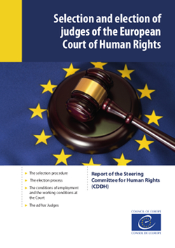 The longer-term future of the system of the European Convention on Human Rights