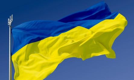 Congress concludes remote observation procedure regarding the local elections held in Ukraine