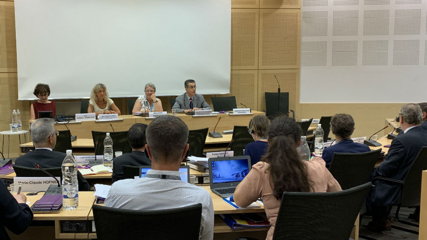 GREVIO exchanges views with European Court of Human Rights