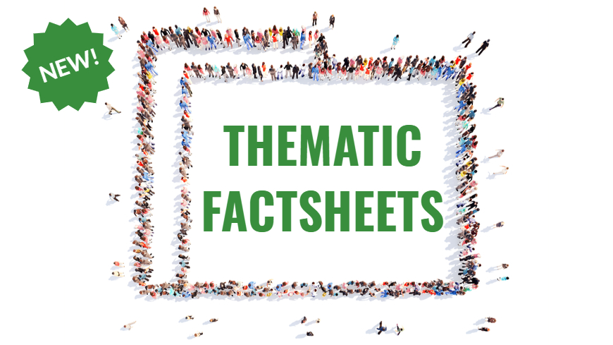 Execution department launches new series of thematic factsheets