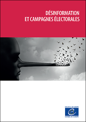 Disinformation and electoral campaigns