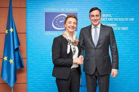 Secretary General meets with Mr David McAllister, Chairman of the Committee on Foreign Affairs of the European Parliament