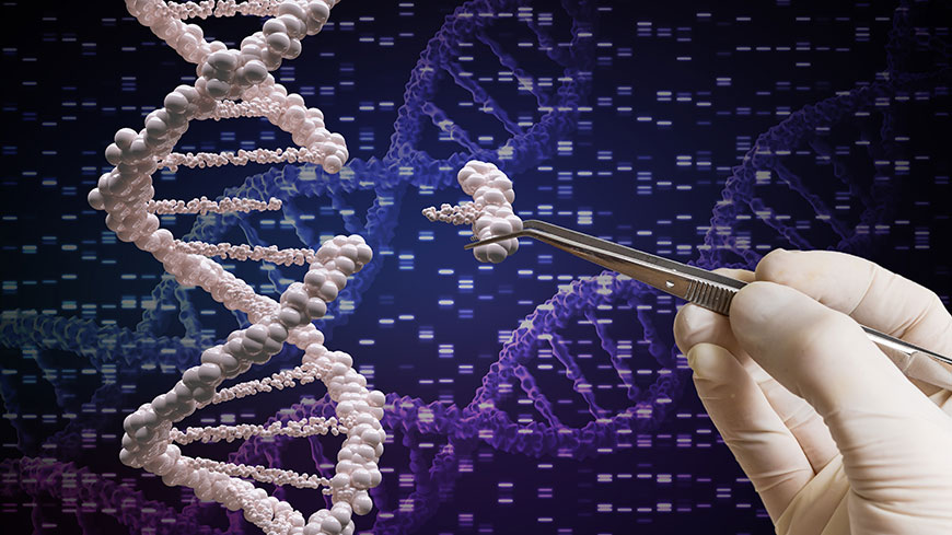 """Ethics and Human Rights must guide any use of genome editing technologies in human beings"""
