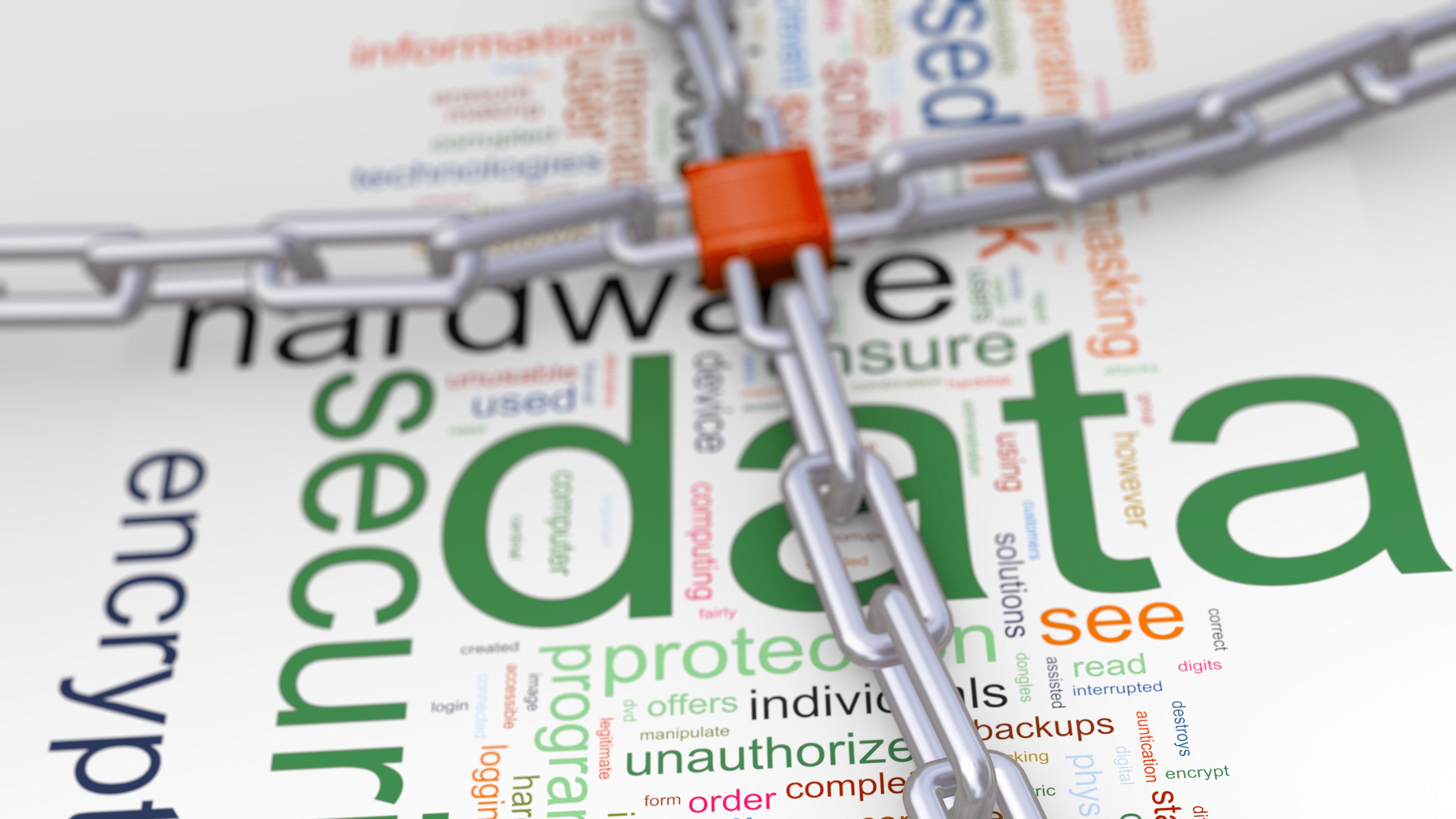 Data Protection Day - Newsroom
