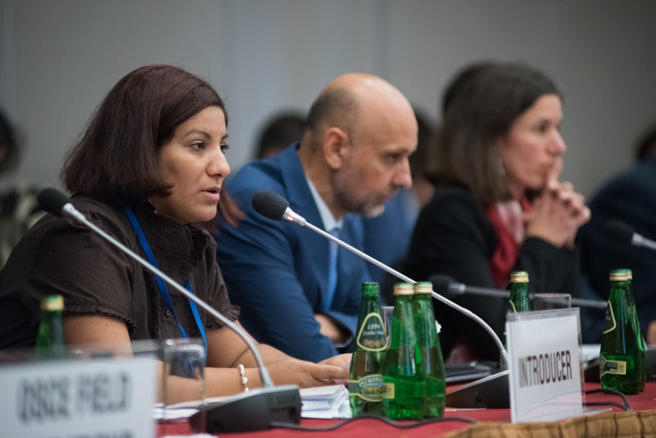Promoting political participation of Roma and Sinti fundamental to effective policy making