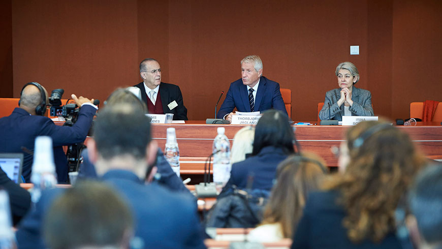 Council of Europe colloquy on protecting cultural heritage from destruction and trafficking