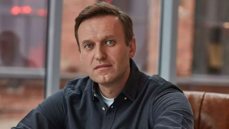 Commissioner for Human Rights calls for prompt investigations into Alexei Navalny's case