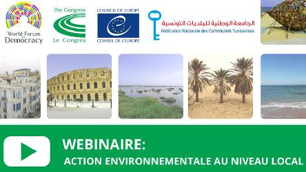 Webinar: Can local democracy meet environmental challenges?