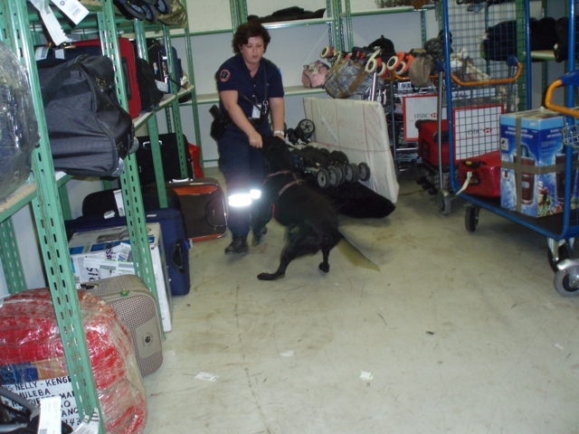 1 French Canine Unit at Orly Airport, Paris - use of dogs for narcotics detection.jpg