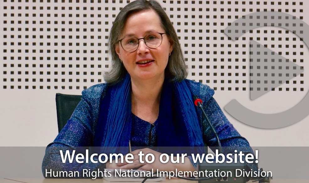 Tatiana Termacic, Head of the Human Rights National Implementation Division