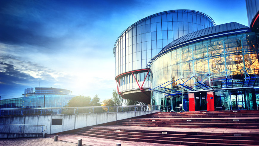 ECHR Superior Courts Network and Council of Europe cooperation