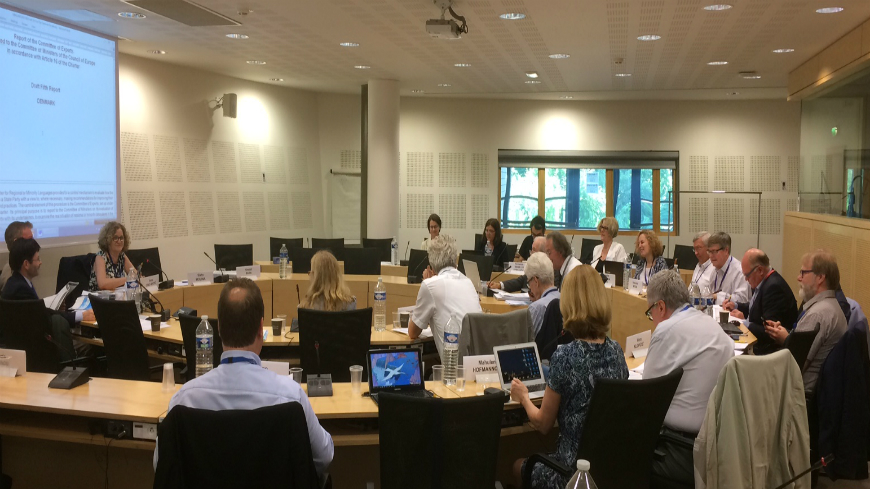 Committee of Experts meets in plenary