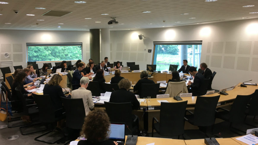 Ad hoc meeting on Statelessness Determination Procedures
