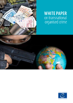 The White Paper on Transnational Organised Crime