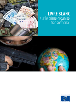 White paper - Council of Europe European Committee on Crime Problems