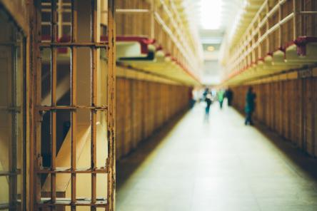 Revised European Prison Rules: new guidance to prison services on humane treatment of inmates