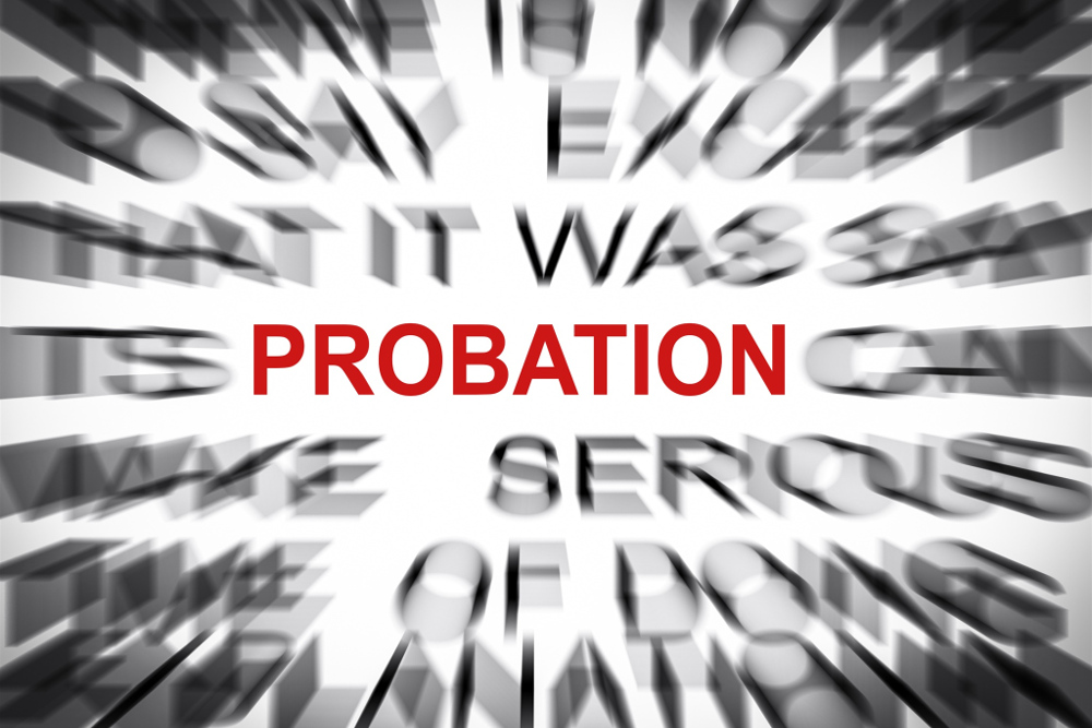 Council of Europe Probation Rules
