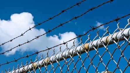 Ten-year trends in European prisons and foreign offenders in prison and probation: two new reports