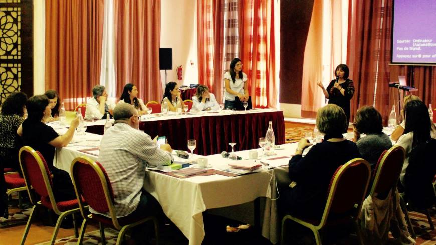 Training of Experts on the Human Rights-based approach in Combating Violence against Women
