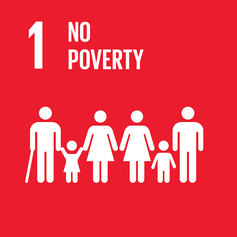 link to goal 1 No poverty