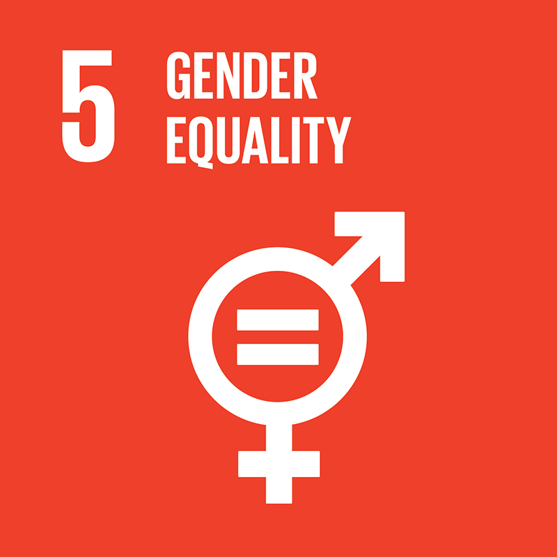 Link to goal 5 Gender equality