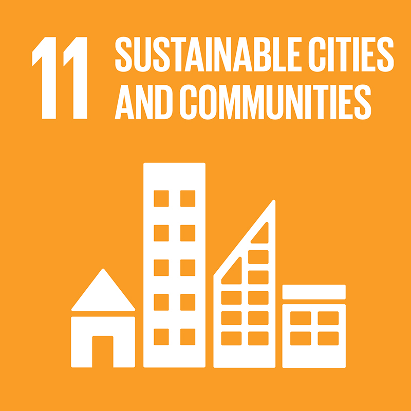 Link to goal 11 Sustainable cities and communities