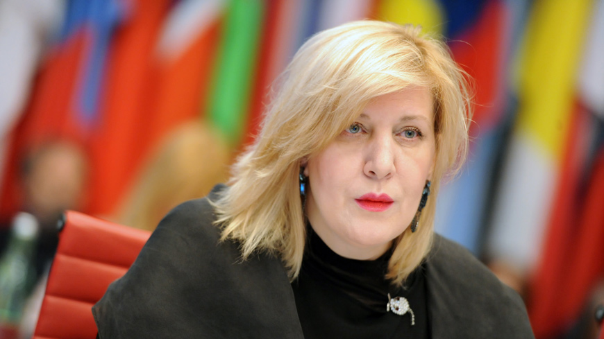 Commissioner urges Albania's Parliament to review bills which restrict freedom of expression