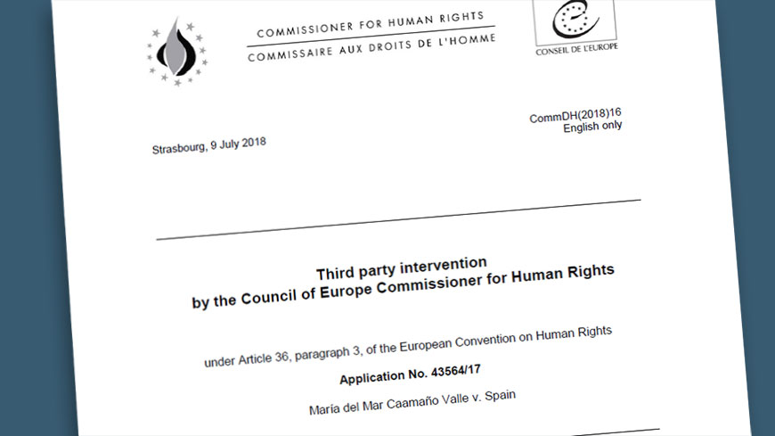 Commissioner Mijatović intervenes before the Strasbourg Court on the right to vote of persons with disabilities