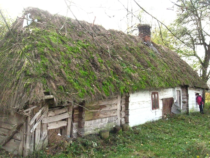 Thatch covered wooden hut in Wólka Horyniecka, Subcarpathian voivodeship.jpg