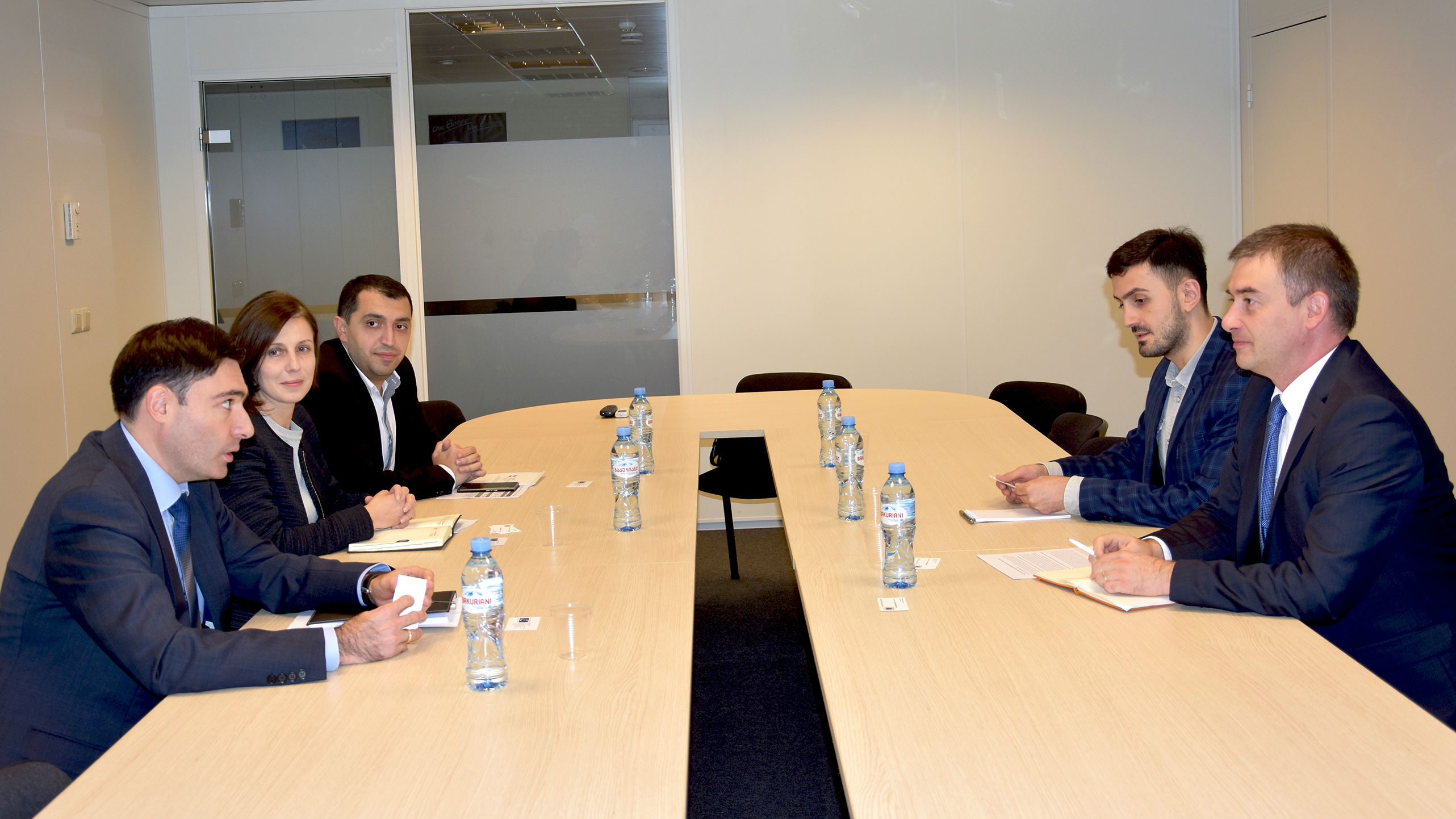 Head of Council of Europe Office in Georgia meets with newly-installed Auditor General Irakli Mekvabishvili
