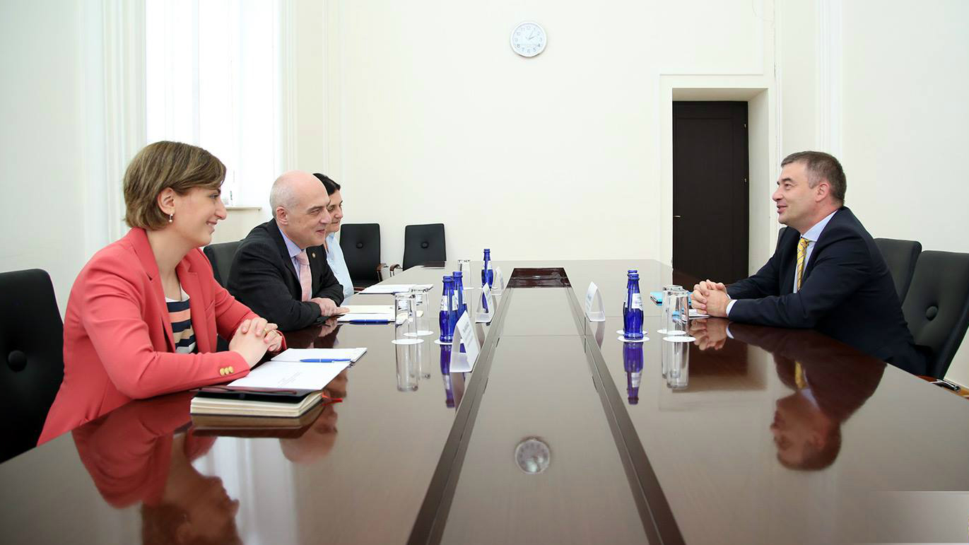 The Head of the Council of Europe Office in Georgia met with the Minister of Foreign Affairs