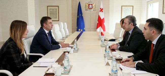 Meeting held between the Prime Minister of Georgia and the Head of the Council of Europe Georgia Office