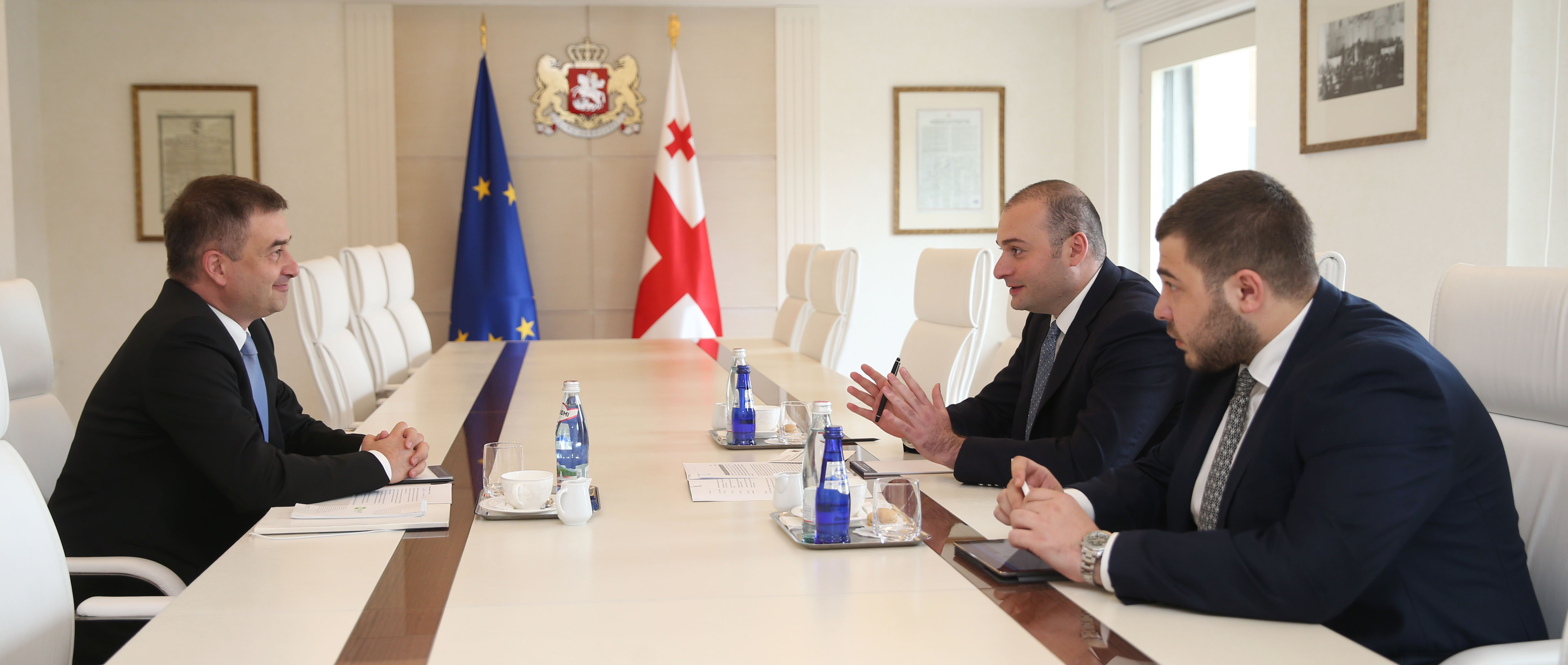 The Head of the Council of Europe Office in Georgia met with the Prime Minister