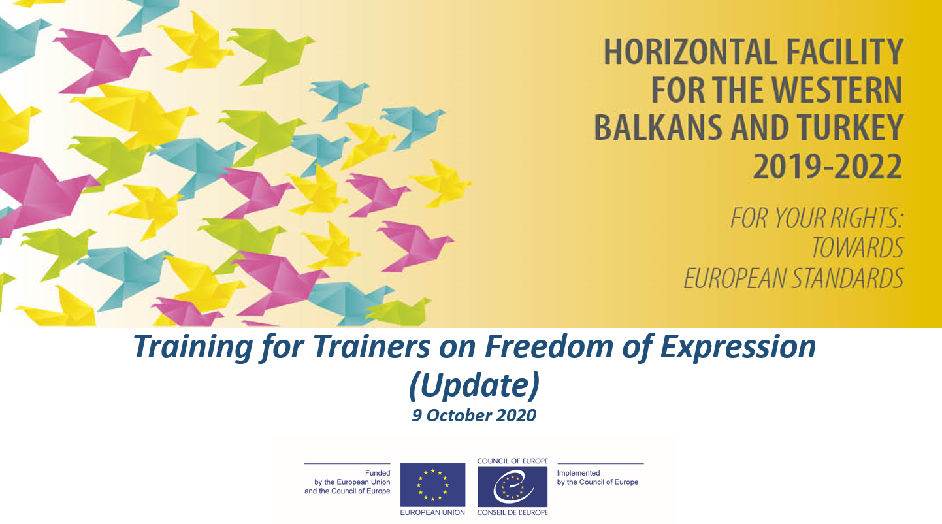 Training of trainer on Freedom of Expression in Kosovo*