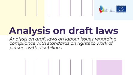 Analysis on draft laws on labour issues regarding compliance with standards on rights to work of persons with disabilities presented