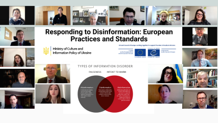 Responding to Disinformation: European Practices and Standards