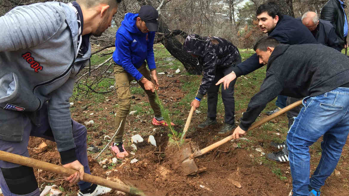 Roma community leaders and civil society organizations contribute  to reforestation of Krastë e Madhe