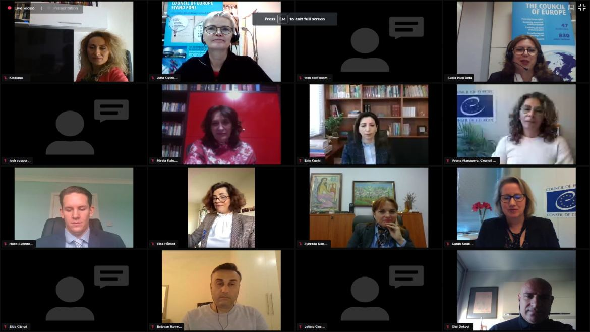 Videoconference on Democratic Citizenship Education
