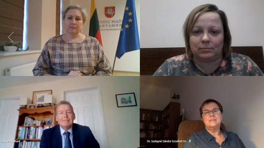Lithuania: follow-up meeting