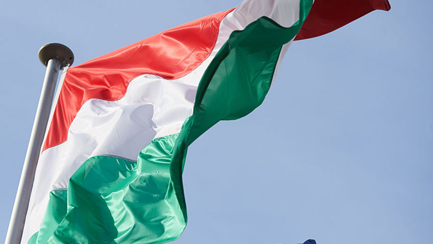 Adoption of a Committee of Ministers' resolution on Hungary
