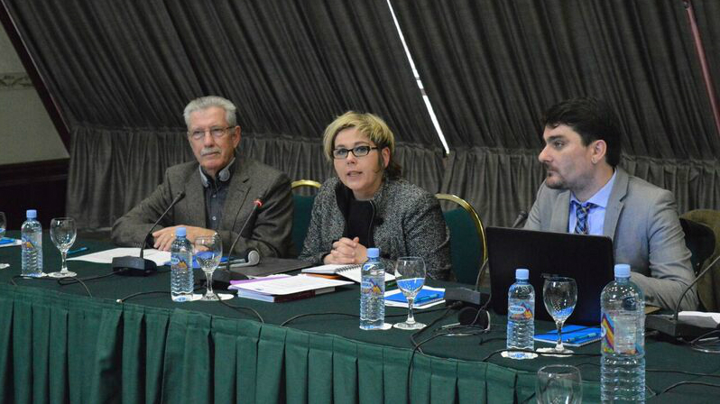 Report published following the visit of the Conference of INGOs to Skopje