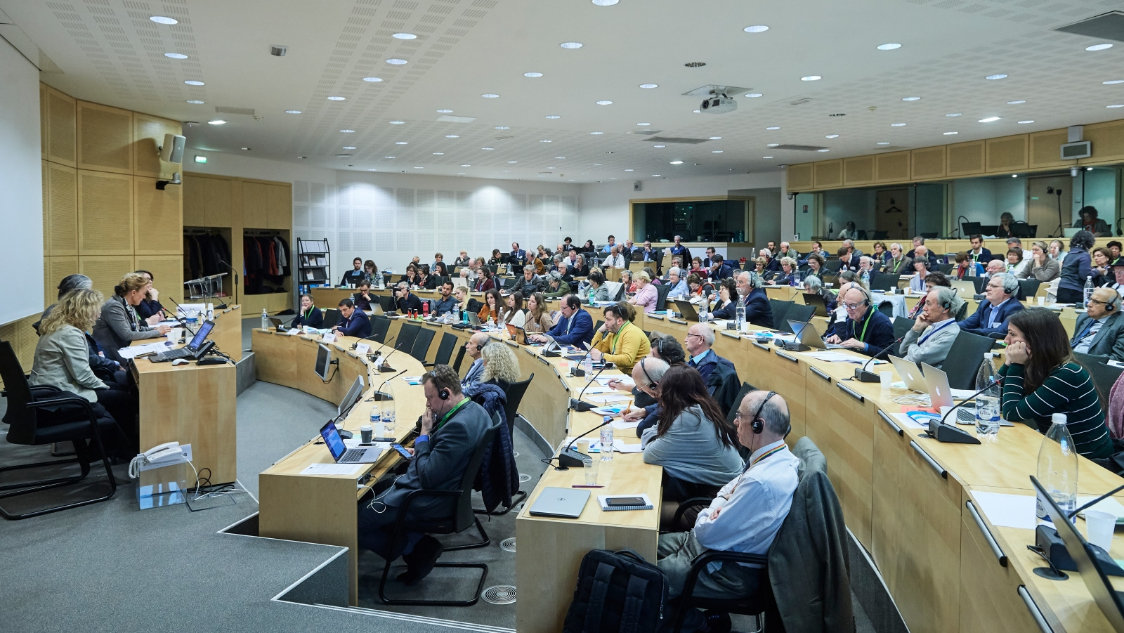 The future of the Council of Europe: Civil Society's commitment