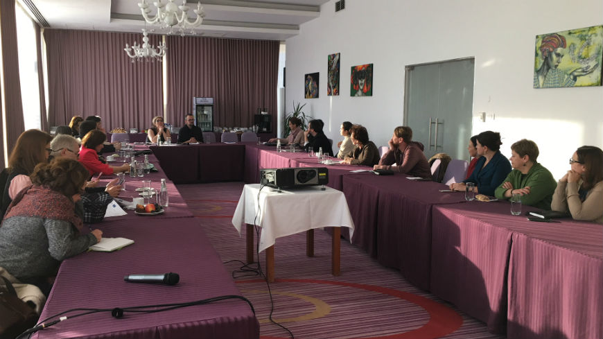 Follow-up visit of the Conference of INGOs to Romania