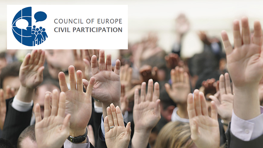 Survey on the participation of NGOs in the Council of Europe